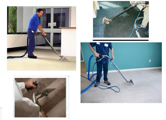 Tru Blue - Carpet Cleaning